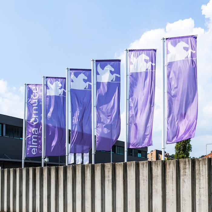 Dostpo do Elme Črnuč - slika zastav
